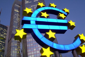 The Mirage of a Global Euro-  OPINION