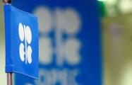 Azerbaijan's joining OPEC not on agenda - minister
