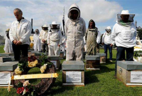 Beekeepers stage funeral for France's dying bee population - NO COMMENT