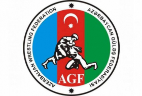 Azerbaijan to host international wrestling tournament