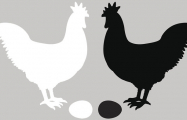 Quantum chicken-or-egg experiment blurs the distinction between before and after