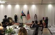 Azerbaijan's Republic Day celebrated in Los Angeles -  PHOTOS+VIDEO