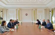 President Ilham Aliyev receives Turkish vice president