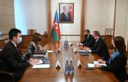 Azerbaijani FM meets with President of International Turkic Culture and Heritage Foundation