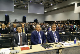 Delegation of Azerbaijani emergency situations ministry attends third UN World Conference in Japan