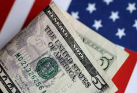 Managing the risks of a rising dollar - OPINION