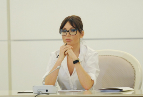 First Vice-President Mehriban Aliyeva congratulates Azerbaijani people on Constitution Day