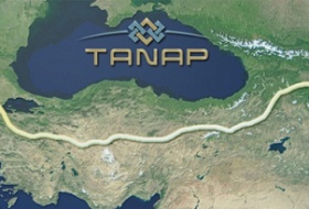 TANAP may be used by Gazprom for gas supply to south of Europe
