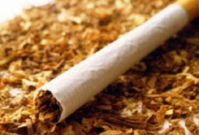 Expanding export of Azerbaijan's tobacco